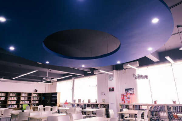 THIS_Library_1-600x630